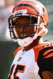 NFL Cincinnati Bengals WR Chris Henry