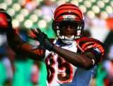 NFL Cincinnati Bengals WR Chad Johnson