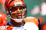 NFL Cincinnati Bengals tightend Tony Stewart