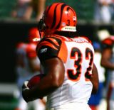 Cincinnati Bengals RB Rudi Johnson