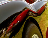 Austin-Healey Conclaves