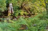 Little River Van Damme State Park Mendocino CA pano2.jpg
