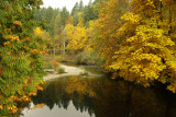 AUTUMN ON THE RIVER.