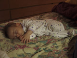Sleeping Bean 7.JPG