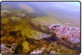Edge of Mono Lake