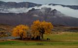 Winter Sneaks Up on Autumn