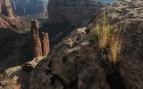 Spider Rock, Grass Tufts, Canyon de Chelly