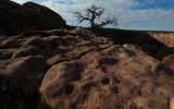 Canyon de Chelly Still Life