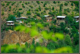 Yusufeli area