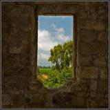 The ruined hacienda in Ga'aton
