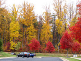 Color combination in the parking lot