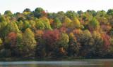 Multicolored swath