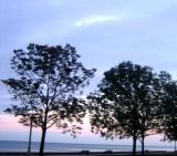 serenity shore
