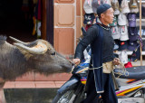 A Black Hmong man leads his water buffalo through Sapa town.