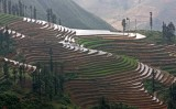 Mountain rice terraces surrounding Sapa