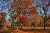 Autumn Scene in HDRNovember 4, 2009