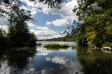 Vischer Ferry Reflection