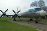 IL-18.jpg