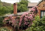 Pinkie on 'The Lofts'