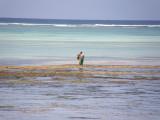 Reefwalking