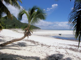 Grand' Anse, Praslin Island, SEYCHELLES