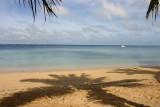 Tongan Scenes