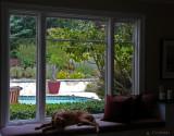 Relaxing Window Bench