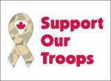 support_troops.jpg