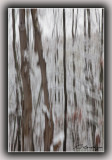 Snow In The Forest, Abstract