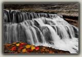 Fallen Leaves By Waterfall (2)