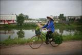 july 2008 / Vietnam