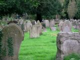 - 17th September 2006 - Aldford churchyard