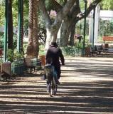 rabbi bike gan meir