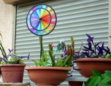 plants and rainbow wind spinner