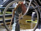 ams bike rope.JPG