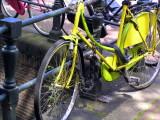 ams bike yellow.JPG