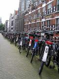 ams bikes line.JPG