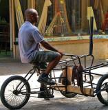 P9170691 - cloth bike -ed.jpg