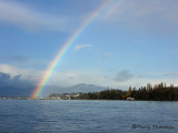 Rainbow in Comox Estuary 1.JPG