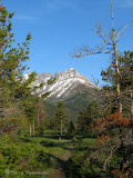 Waterton Lakes N. P. 1.JPG