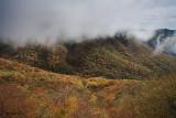 Blueridge Parkway Fog 2
