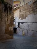Walking by ancient walls