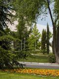 Pozuelo: Una calle con vida / A street with life