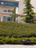 Pozuelo: Un buen lugar para descansar / A good place to rest