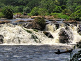 Fishing in the falls / Pescando en las cascadas