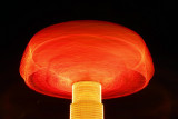 A Magic Mushroom.jpg