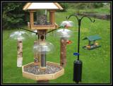 Bird feeders 2008