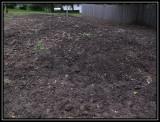 Raised garden bed 2009