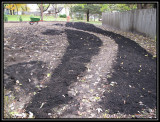 Seeded and mulched