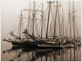 Tallships I